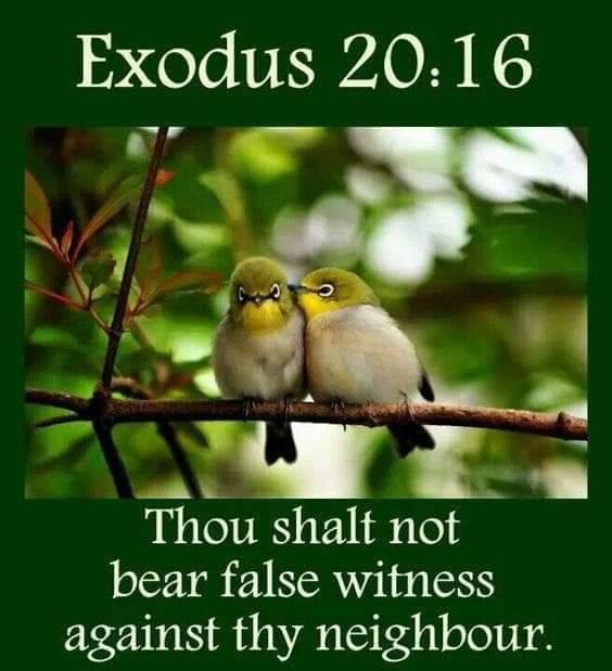 The Ninth Commandment